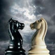 Cavalo Preto x Cavalo Branco